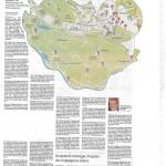 ArtikelHamburgerAbendblatt_Januar2015